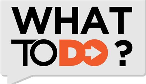 what to do logo