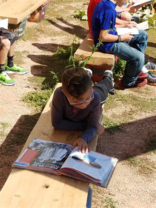 Reading on the Garden Benches